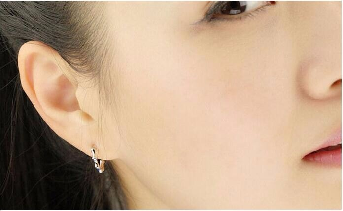 Free Shipping New Exquisite Noble 925 Sterling Silver Jewelry Fashion Simple Letter C Female Earrings  SE188
