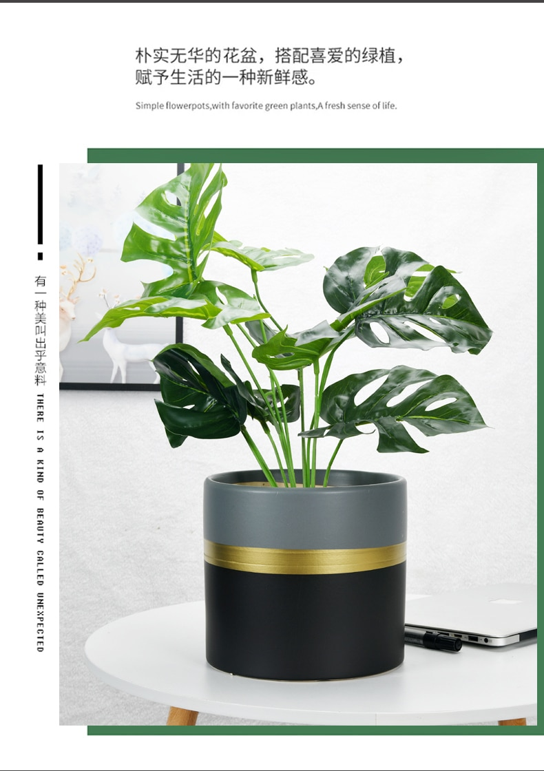Modern Simple Cylindrical Ceramic Flower Pot Nordic Succulents Pot Plant Pot Home Office Christmas New Year Decoration