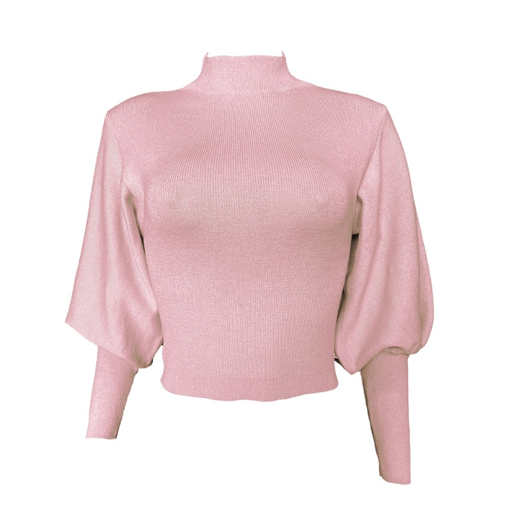 Turtleneck Woman Sweaters Fall Long Sleeve Knitted Sweaters for Women Winter Clothes Women Crop Top Women Jumper Cropped Sweater