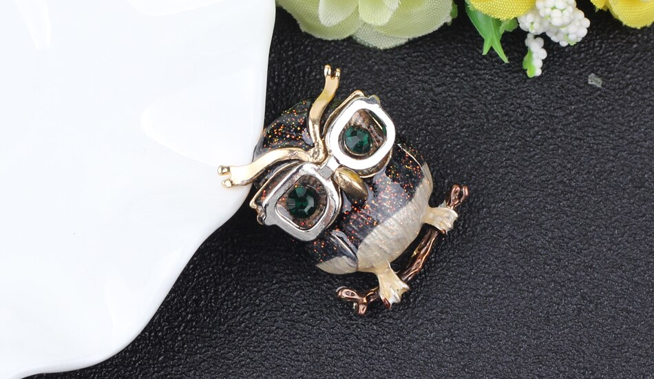 WEVENI Alloy Enamel Glasses Owl Bird Brooches Pin For Women Ladies Teen Rhinestone Decoration Accessories Novelty Scarf Jewelry