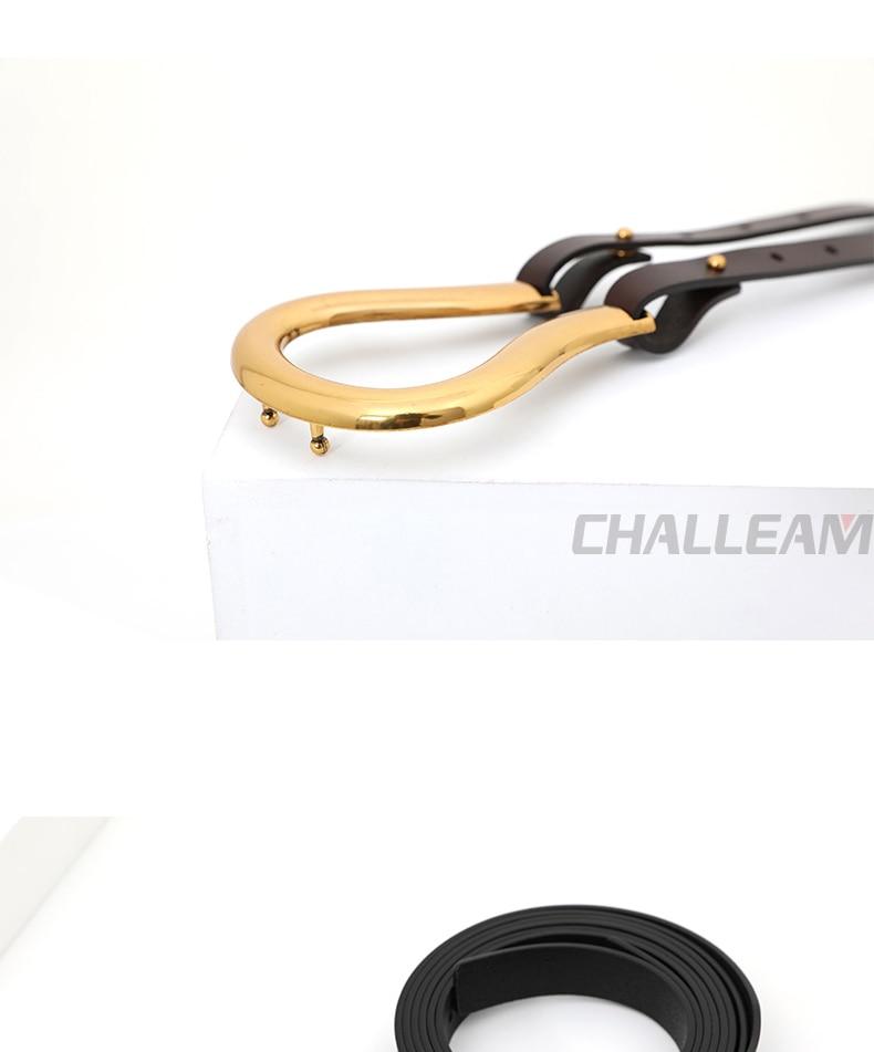 Wilde Dames Riem Vrouwen Riem Licht Luxe Persoonlijkheid Gebogen Metalen Hoefijzer Gesp Grote U-Vormige Mode X209